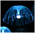 贵州水母灯